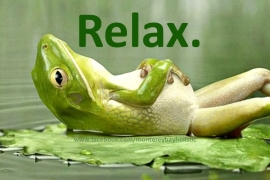 relax-frog